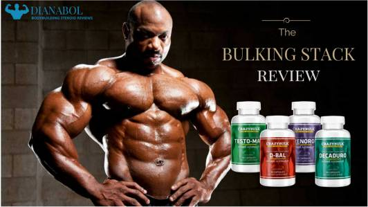 bulking_stack_review